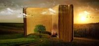 Chiusura estiva biblioteche comunali