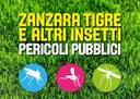 Zanzare tigre e altri insetti: la campagna informativa regionale